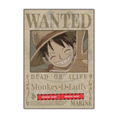 One Piece - Wanted - posters